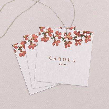 Lobelia Cardinalis I
